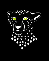 Cheetah Inverted